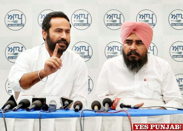 Meet Hayer AAP press conference