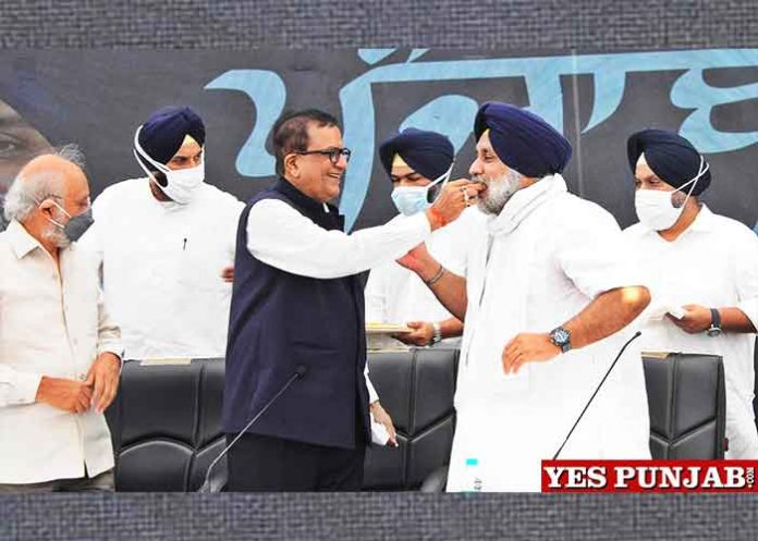 SAD BSP form alliance for 2022 Elections
