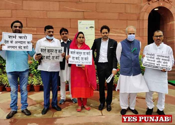 Harsimrat Political Leaders Protest outside Parliament