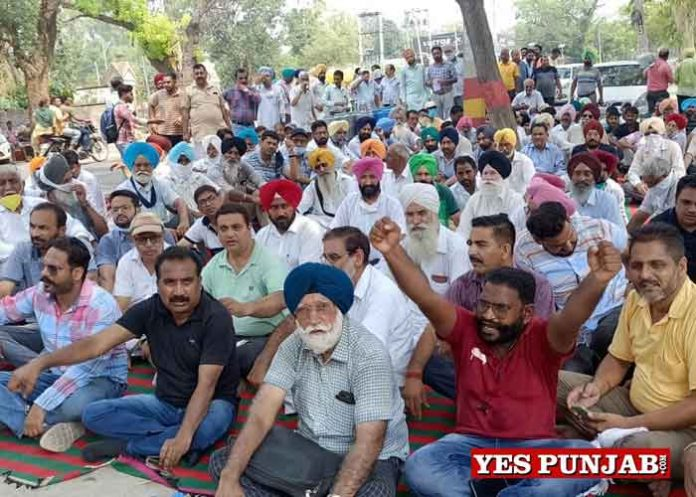 Teachers Employees protest outside Rana Sodhi House