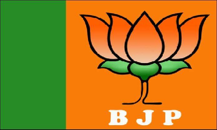BJP Clean Sweep