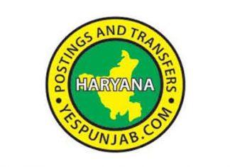 Haryana Transfers logo