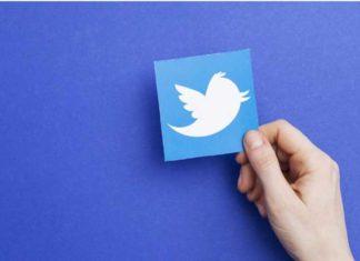 Twitter Holding Logo