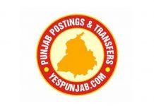 YP Transfers Logo Yellow