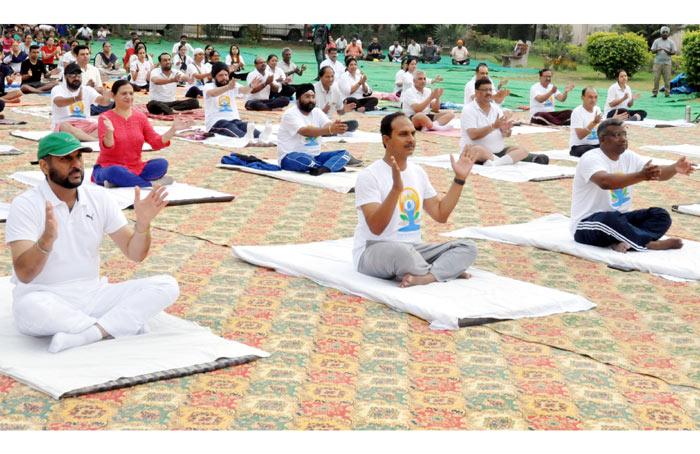 Jalandhar DC CP MC Yoga Day
