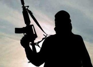 Terrorist Shadow