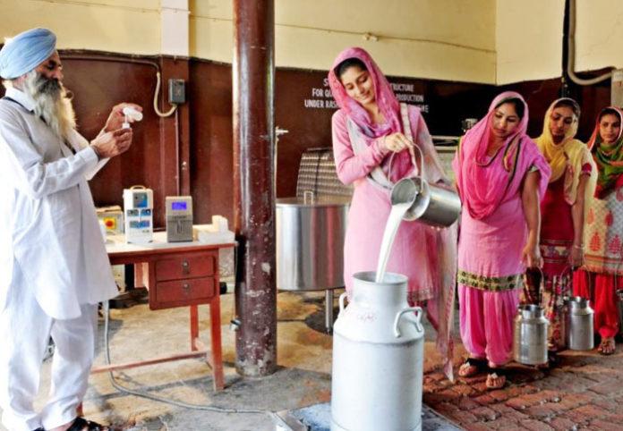 Women Empowerment by Milkfed Verka
