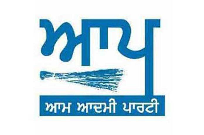 AAP Punjabi Logo