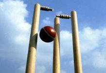 Cricket Wicket Ball