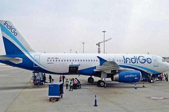 Indigo Plane