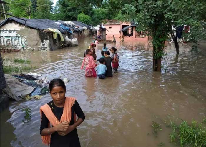 Flood in village 2019 Punjab