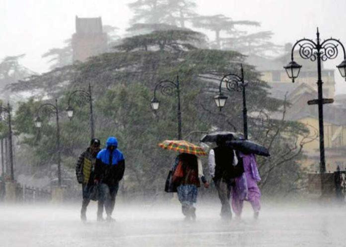 Himachal Rainfall