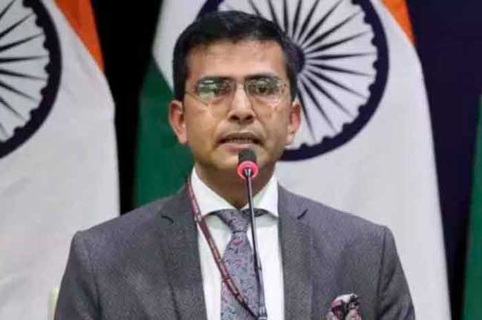 Raveesh Kumar MEA