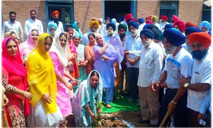 Ravi Inder Singh tree plantation