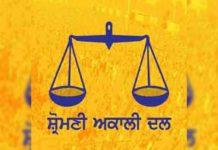 SAD Logo Yellow