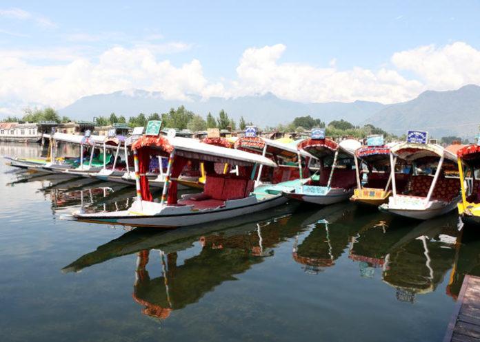 Shikaras Dal Lake Srinagar