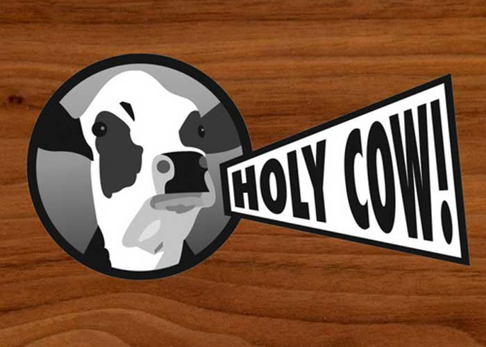 Holy Cow Burger Company Switzerland