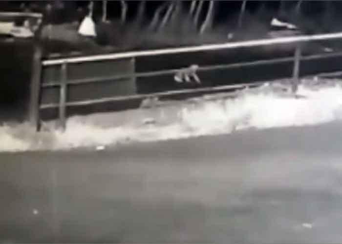 Toddler falls off SUV