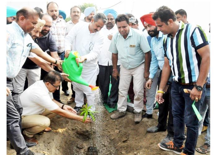 Vijay Inder starts plantation Phillaur to Phagwara