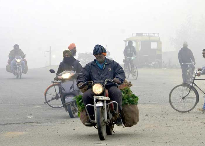Cold wave in Punjab