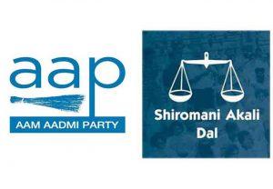 AAP SAD Logo