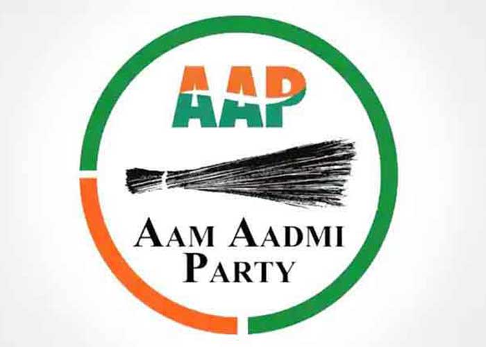 AAP Logo Full