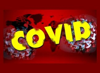 global covid 19 deaths