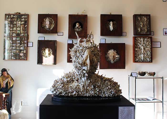 https://yespunjab.com/wp-content/uploads/2020/09/Dunedin-Museum-of-Natural-Mystery-New-Zealand.jpg