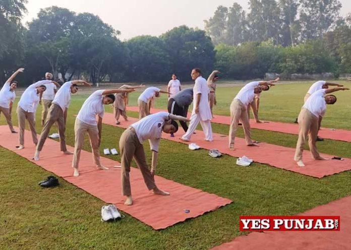 Punjab Police organizes Yoga over Webinar