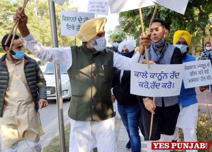 Jarnail Singh Cheema Aman Arora Meet Hayer AAP