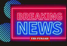 Breaking News Neon Yes Punjab