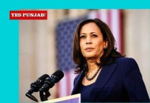 Kamala Harris Yes Punjab