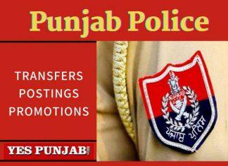 Punjab Police Transfers Postings Promotions