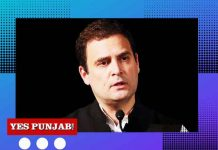 Rahul Gandhi Congress Neon