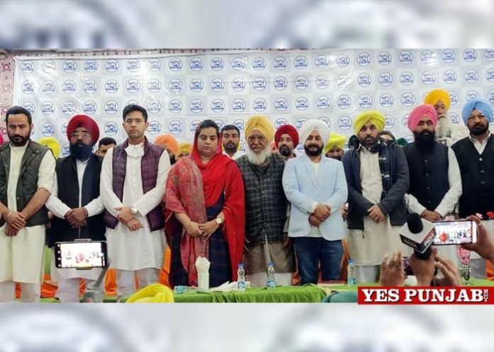 AAP leadership discusses party strategy