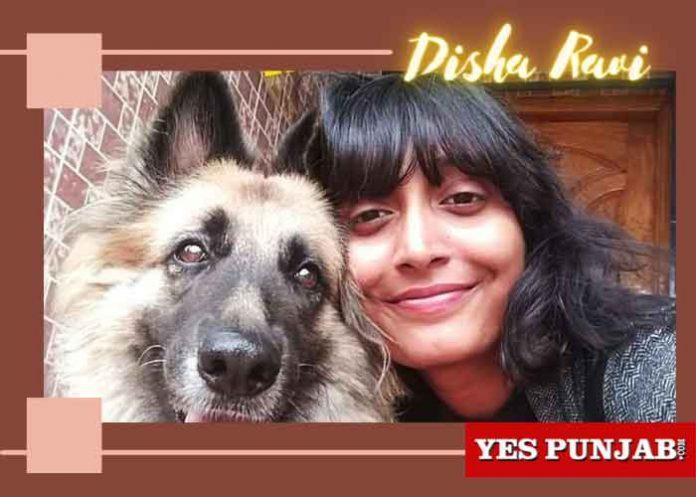 Disha Ravi Bengaluru Climate Activist