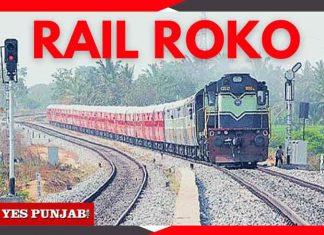 Rail Roko