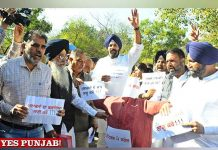 SAD Protest oustide Assembly Budget Session