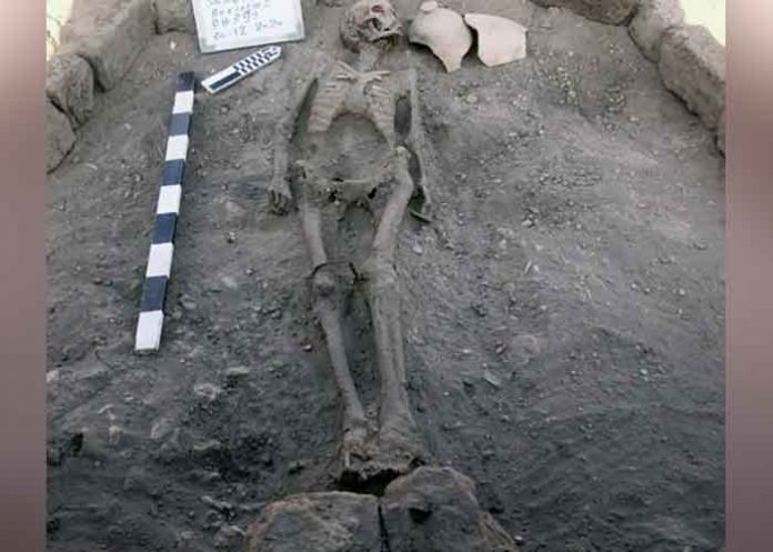 Egypt discover Lost Gold City skeleton