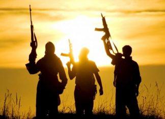 Terrorists Shadow