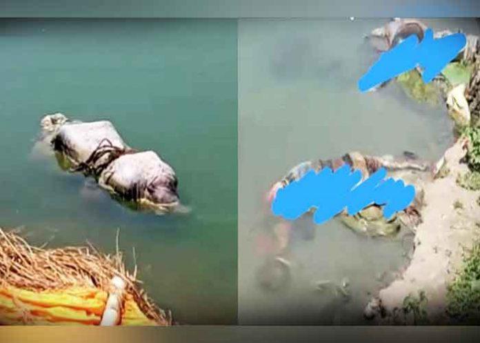 Dead bodies floating in Ganga River