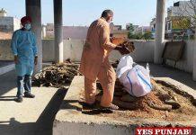 Jai Inder Singh SDM leads last rites of COVID suspect