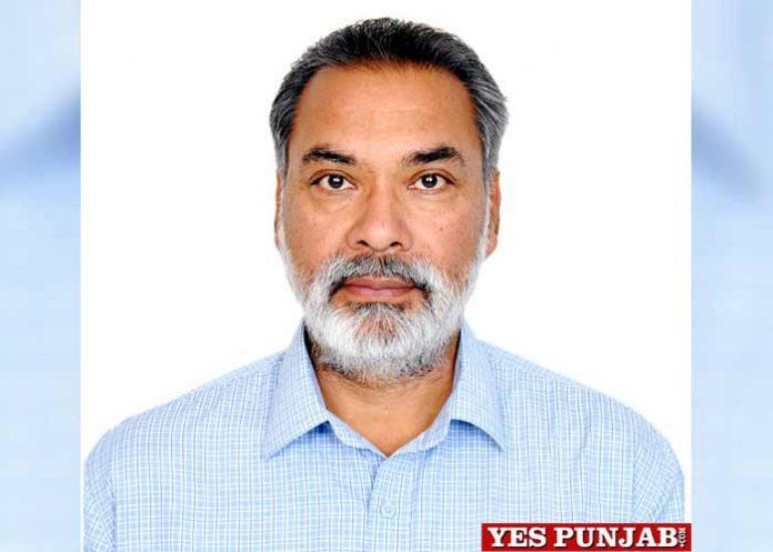 Dr VS Sohu PAU HoD Plant Breeding