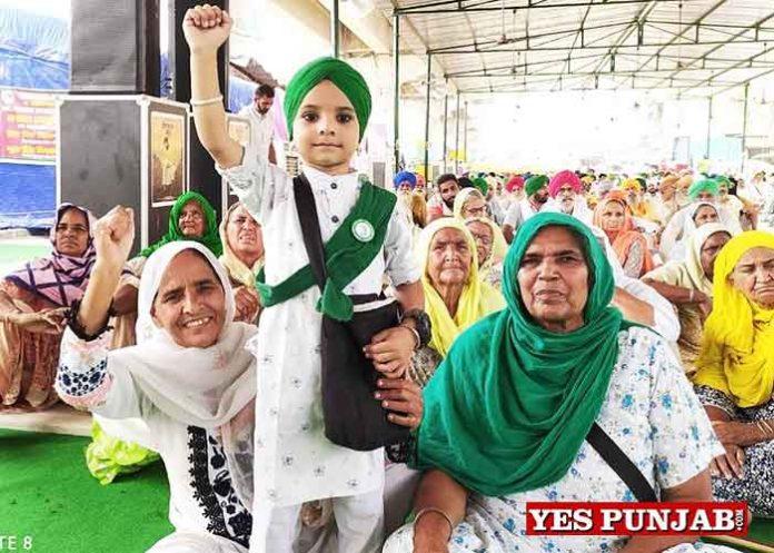 Farmers Protest at Singhu border Delhi