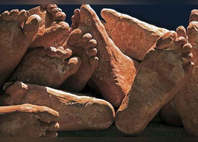Fleeting Footprints of Light Exhibition