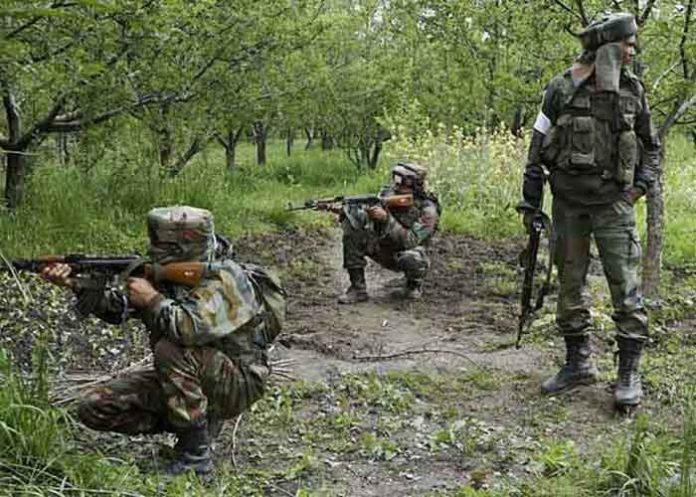 Gunfight Kashmir Forest