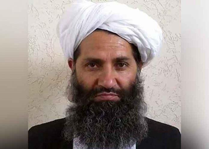 Hibatullah Taliban