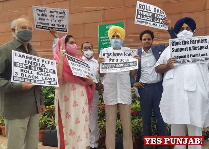 Sukhbir Akali Leaders protest outside Parliament