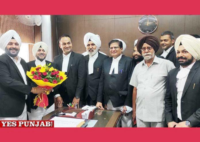 Amar Preet Singh Deol Appointed Senior advocate