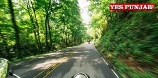 Bike Riding on Road